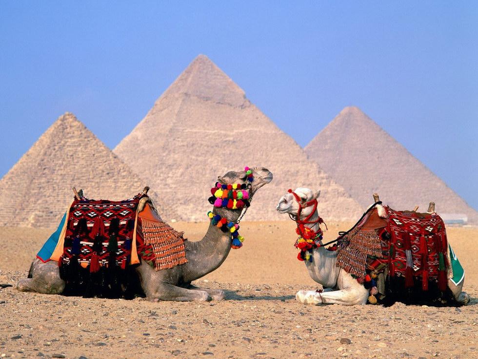 egipt-page